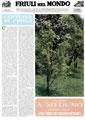 Friuli nel Mondo n. 453 luglio 1992